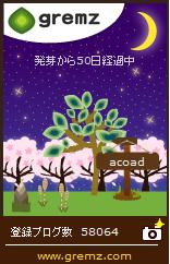 1491388052_00468.jpg