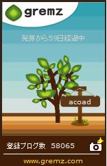 1508117426_04859.jpg
